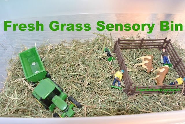 Fresh Grass sensory bin with farm theme