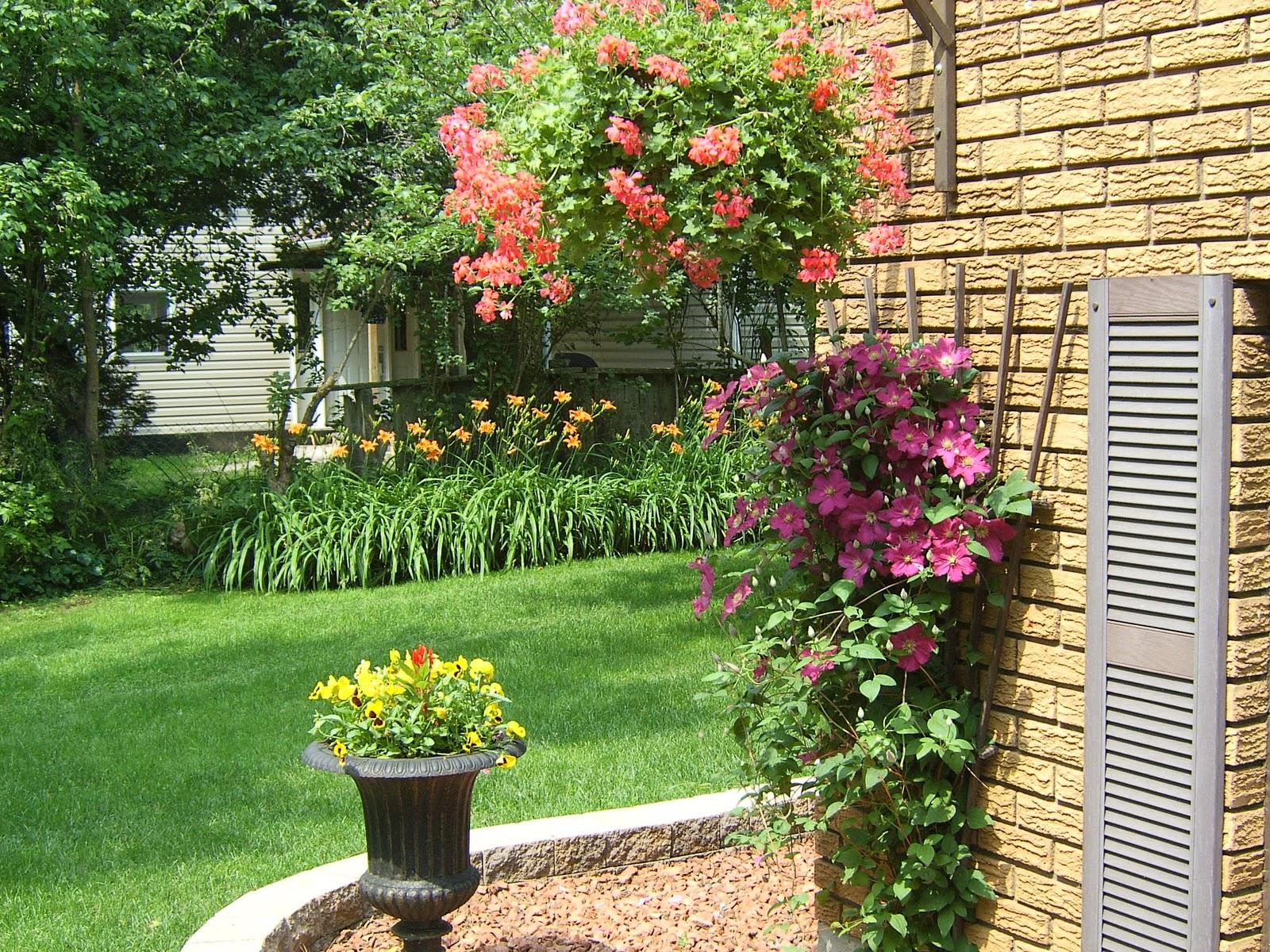 Mad Moose Mama: Garden Design Ideas