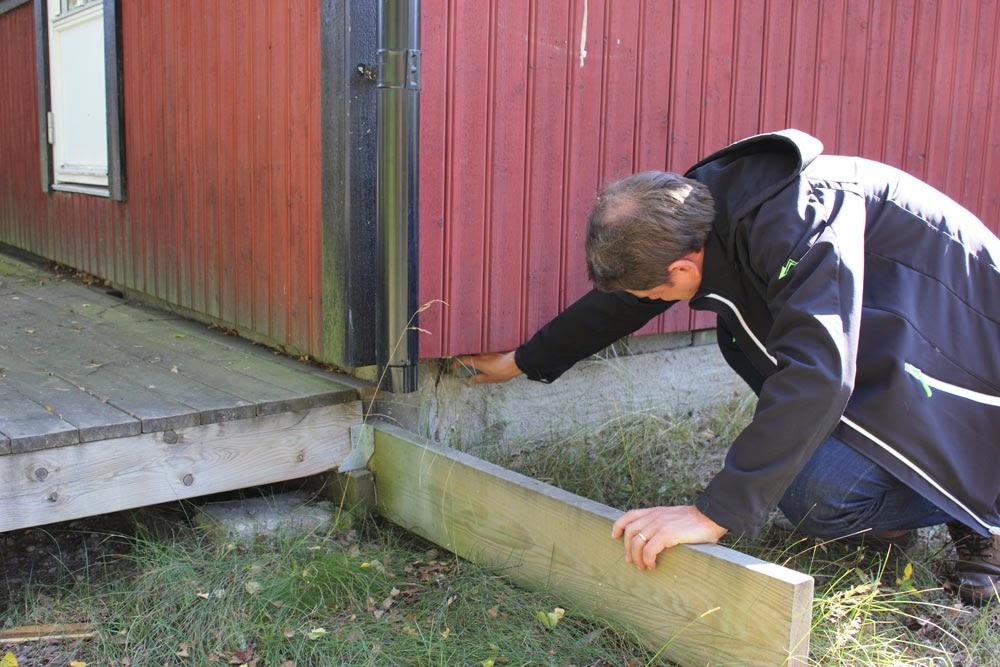 Huset står på plintar, men sen har man antagligen lagt någonting för att undvika så kallt golv på vintern. Man har försökt stänga till. Det sticker också ut en regel och i mina oproffesionella ögon ser ingenting ut att vara gjort som sig bör. Överallt syns brister. En enkel sak att åtgärda är ju att sätta en avledare på stuprännan, så vattnet leds bort. Syns också det tidigare varit högt gräs där uteplatsen nu är. Panelen tar skada av fuktiga grässtrån etc. Jag skulle vilja hett lager med sten närmast huskanten för att minera gräs och avleda vatten.