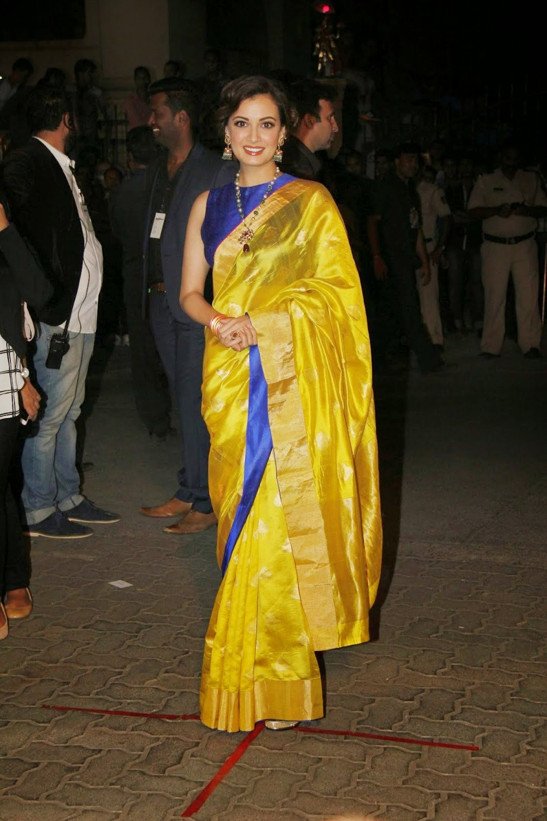 Dia Mirza in Saree at 60th Britannia Filmfare Awards 2015