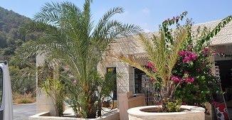 ✈️ Călător în Țara Sfântă - Tiberias şi Muntele Tabor | Oxentia Tourism