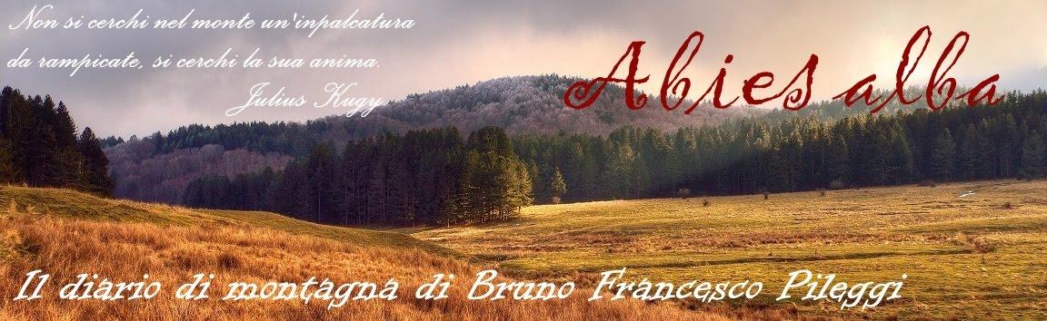 ABIES ALBA. Il diario di montagna di Bruno Francesco Pileggi