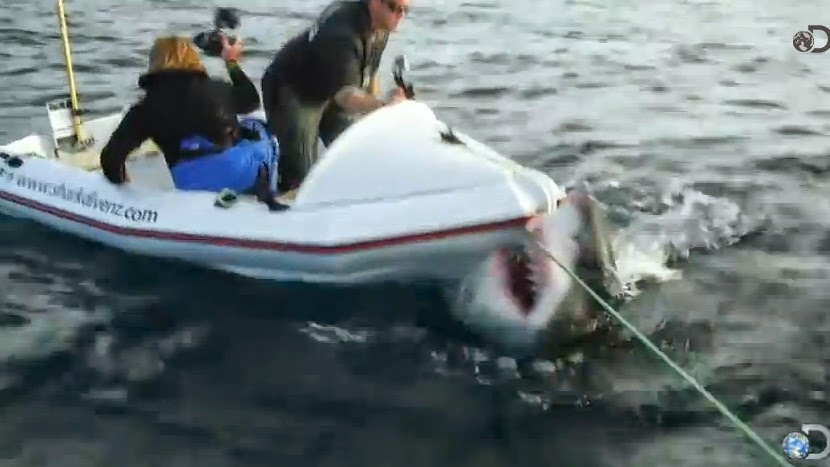 Great white bites boat - Lair of the Mega Shark (Shark Week)