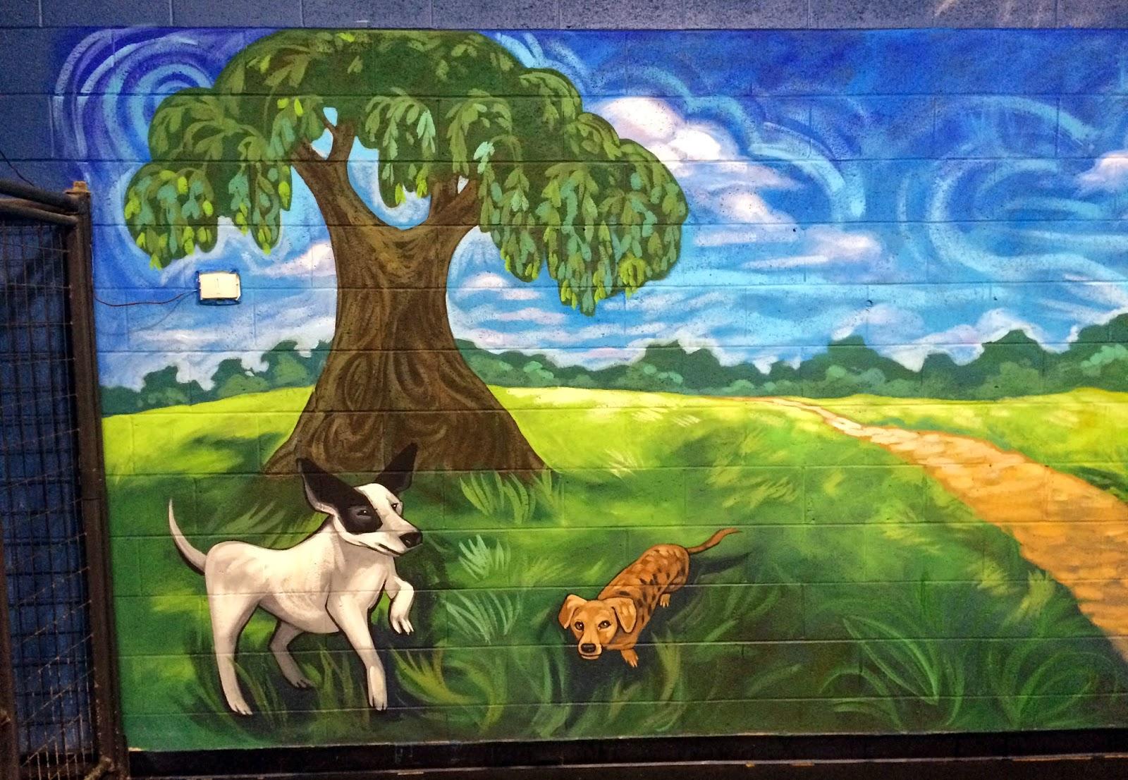 doggie daycare mural, dog mural, barkzone, dog boarding mural, dog groomer mural