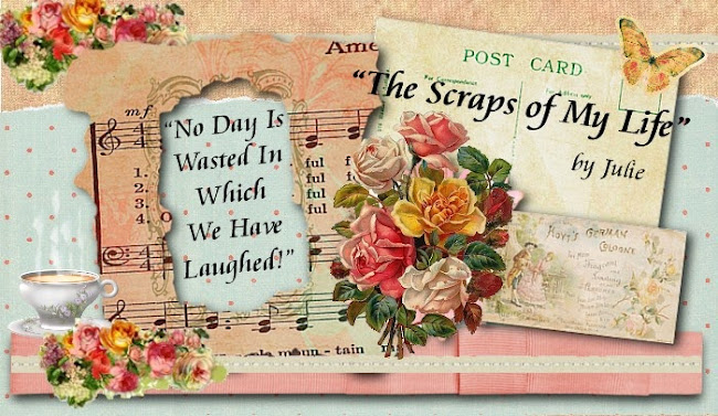 The Scraps of My Life by Julie