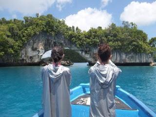 パラオ ダイビング 世界遺産 旅行 観光