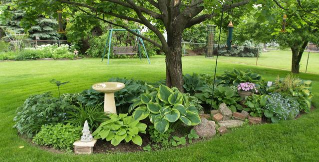 Arte y jardiner a como dise ar un jardin un lugar for Arboles sombra jardin