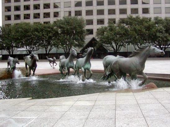 Mustangs de las Colinas, ciudad de Irving, Texas