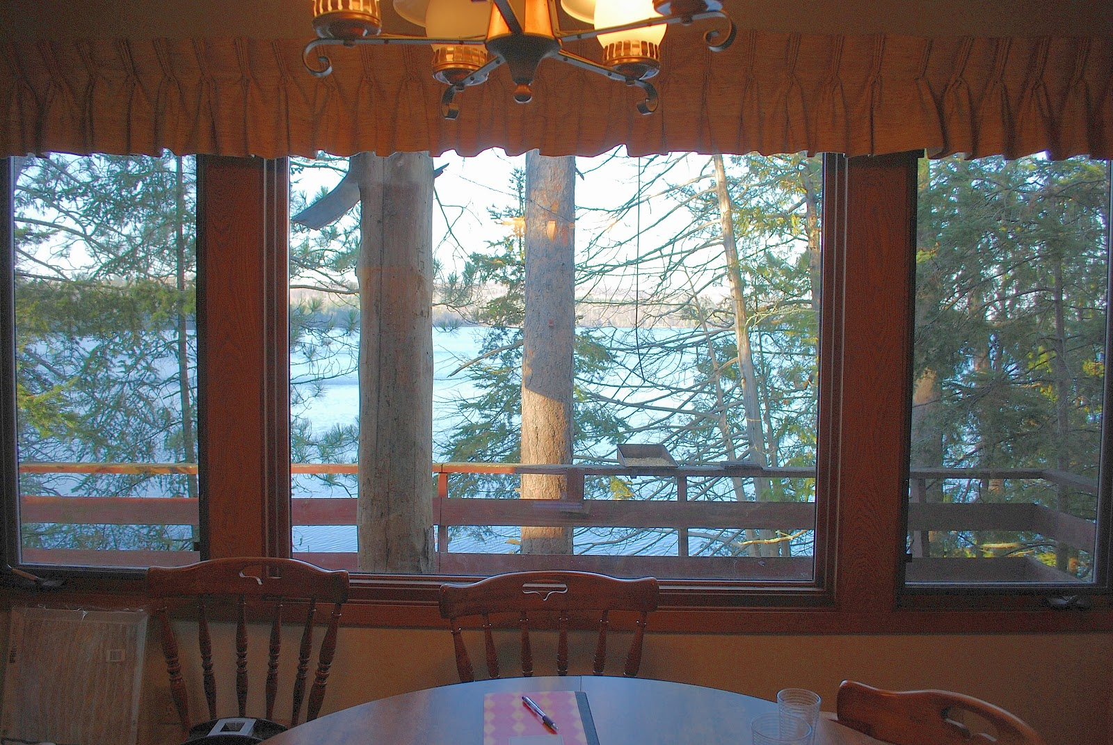 Sarah Ahiers Writes In Which We Bought A Cabin