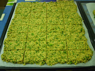 Organic Dehydrated Kale Crackers with Engevita Yeast Flakes