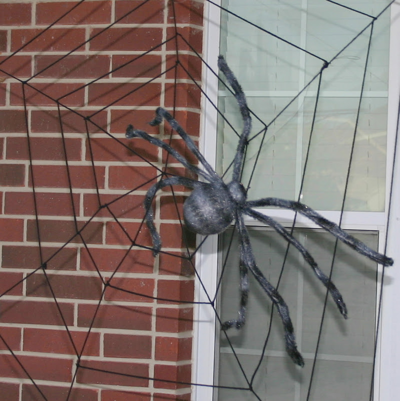 giant spider web cheap