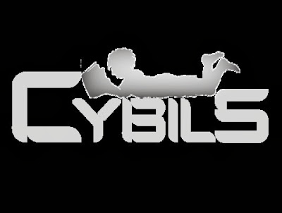The Cybils 2013