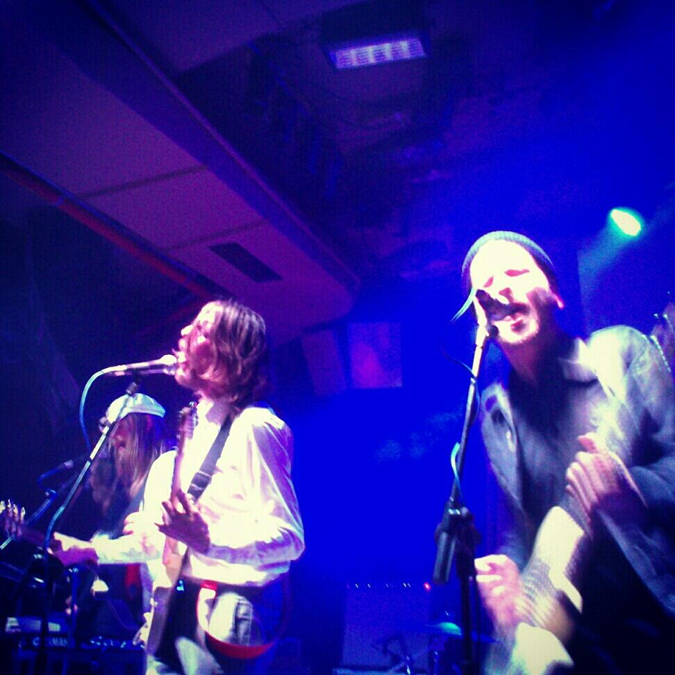 músca, folk rock, Friska Viljor