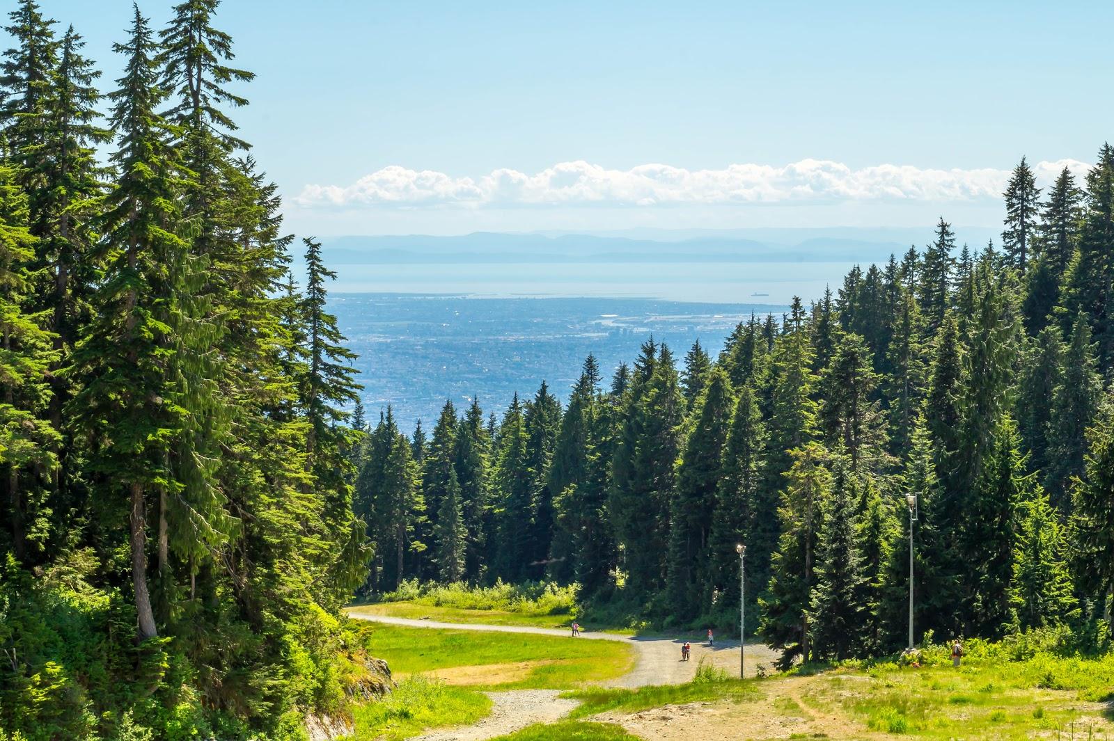 Уже вначале нашей прогулки по горе открываются виды на одноэтажную часть Ванкувера и океанский залив.