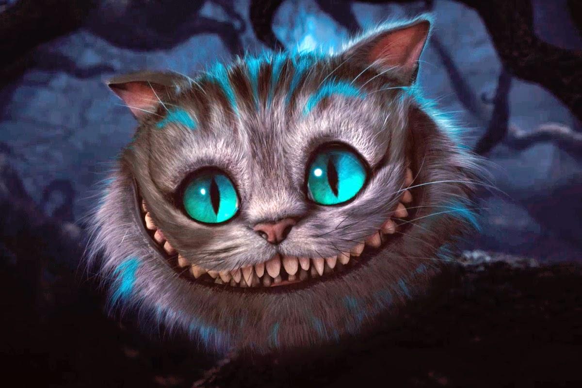 savior of the galaxy; enemy of marine life: Cheshire cat ...