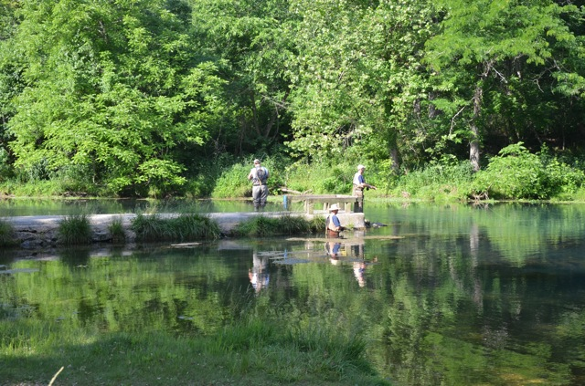 Weaver 39 s tackle store trout fishing report for bennett for Bennett springs trout fishing