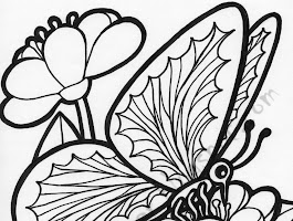 Monarch Butterfly Coloring Pages Print