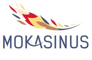 www.mokasinus.lt