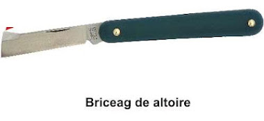 briceag altoit 2