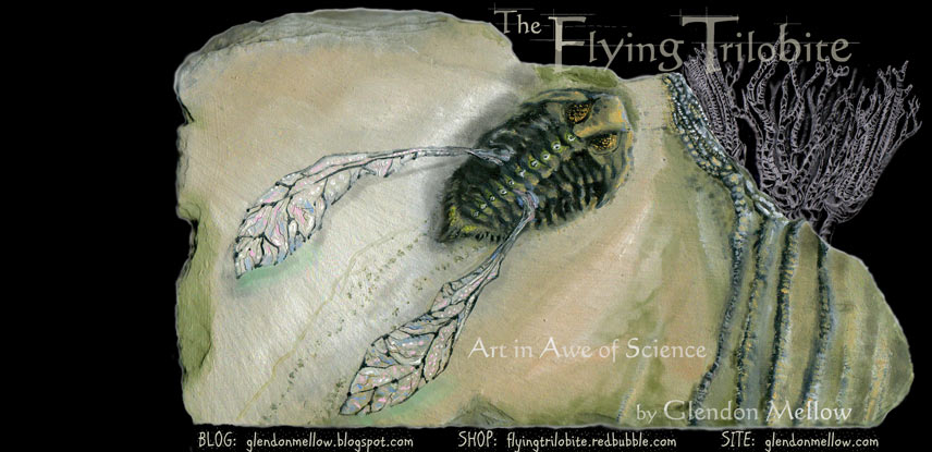The Flying Trilobite