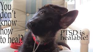 Heal PTSD?