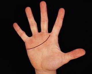 La Linea del Corazón es la más cercana al nacimiento de los dedos