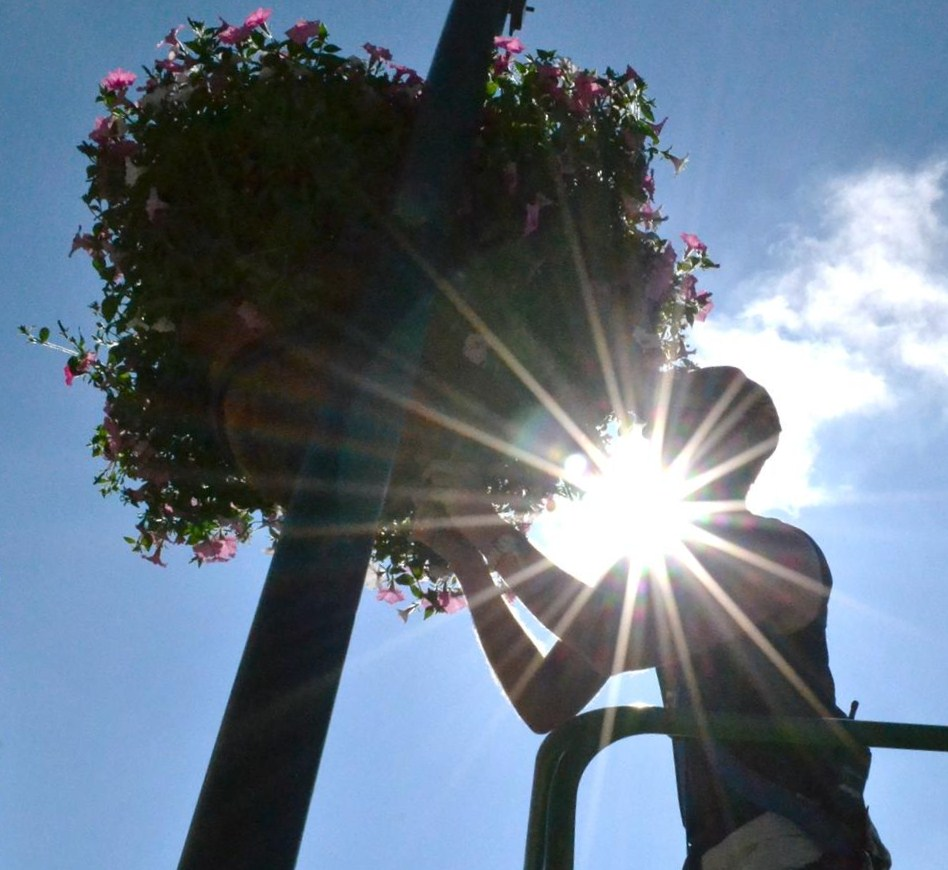 Hanging Flower Baskets Michaels : Pincher creek voice planters beautify main street