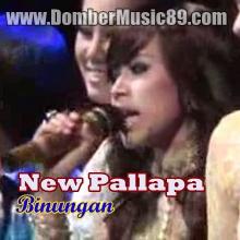New Pallapa live Binuang