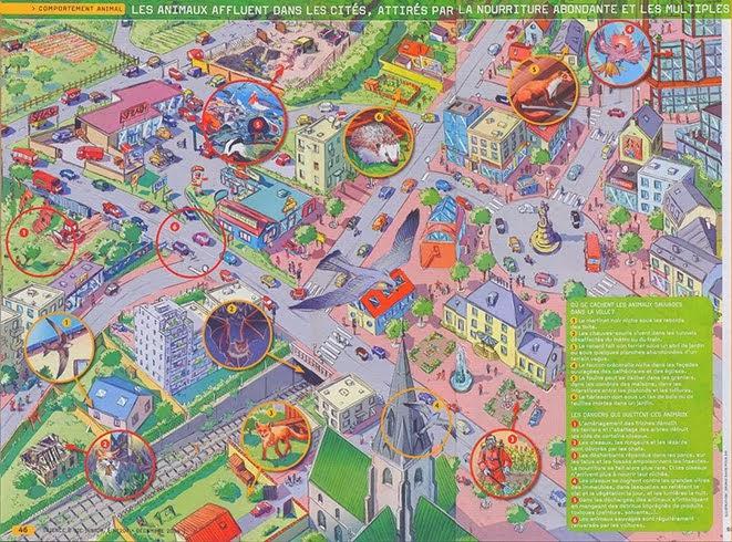 Plan ville Sciences et Vie Technique : crayon et couleur numérique