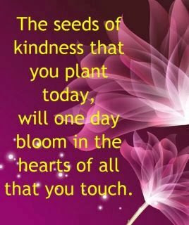 The seeds of kindness that you plant today, will one day bloom in the hearts of all that you touch.