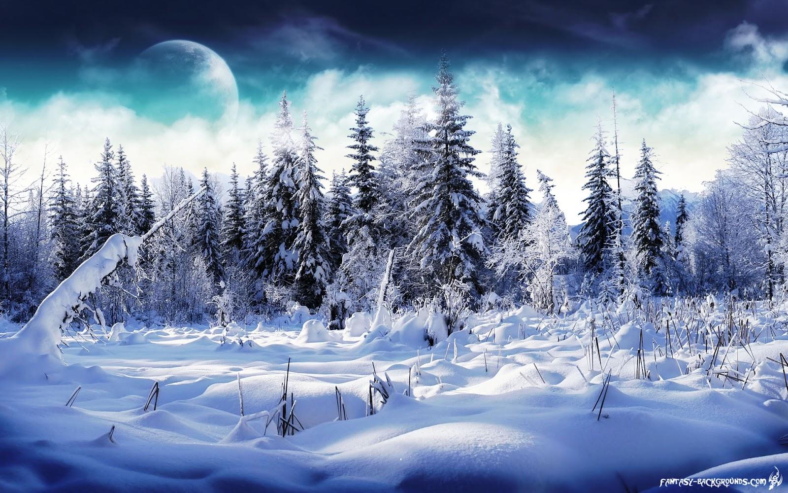 http://1.bp.blogspot.com/-sOxUbeauQC0/T04PdzFPbII/AAAAAAAAASw/soMQs_0wPQU/s1600/winter-wonderland-1920x1200.jpg