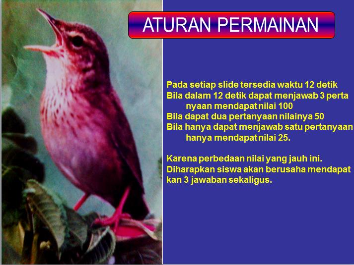 Download Powerpoint Kuis Tentang Adaptasi Anwar Science Community