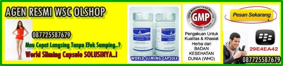obat pelangsing perut obat pelangsing herbal perut sudah mulai buncit ...