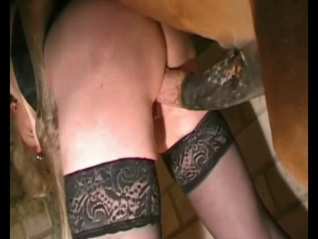 Vídeos Porno Mulher Fazendo Sexo Com Cavalo amp Vídeos de