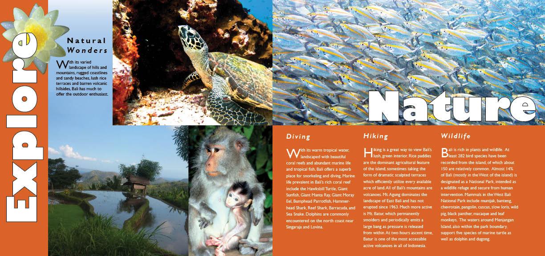 Katrina Miller Design Bali Travel Brochure