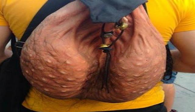 Tas unik berbentuk scrotum pria