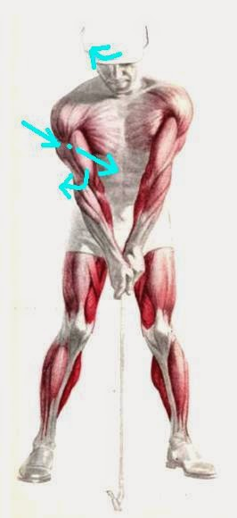 Biokinetic golf swing theory the arms situation the most important missing puzzle added - Paint runner pro avis ...