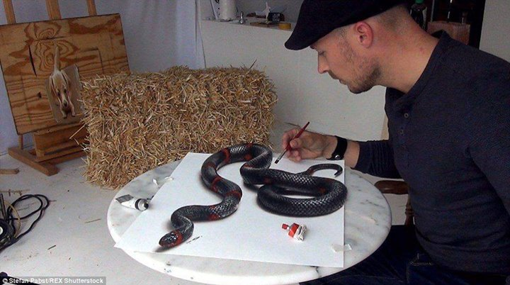 gambar-3dimensi-ular