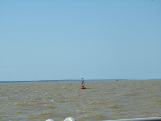 em frente a Belem,Rio Guama
