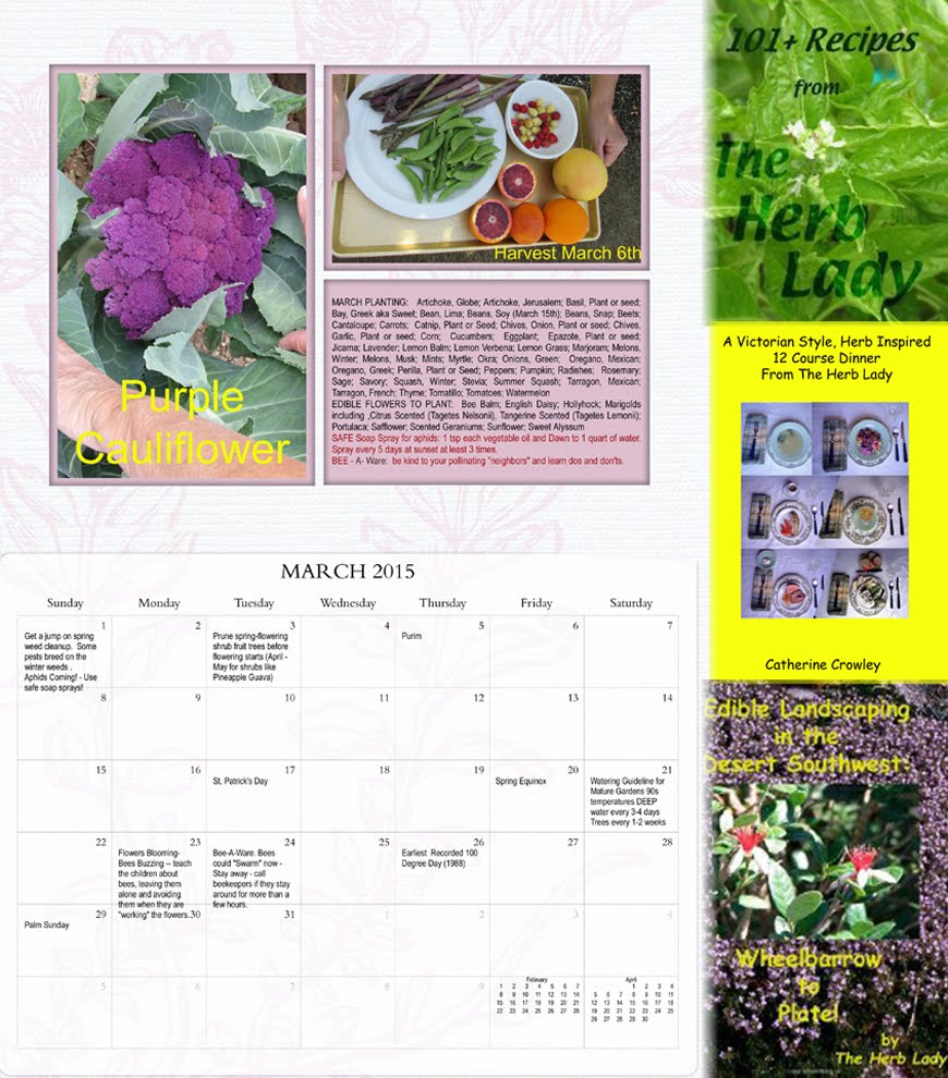 My Books & Calendar at AMAZON