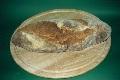 Pane di Cappelli