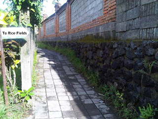 Alley to Rice Field in Ubud