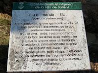 Informació sobre el Roure Gros de la Sèquia