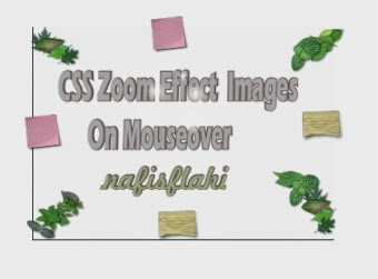 css zoom effect