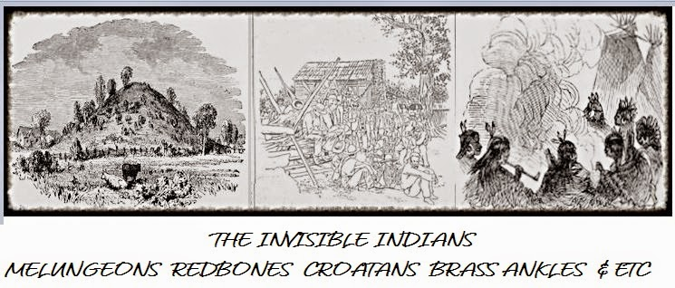 Invisible Indians