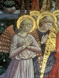anjos não tem halos