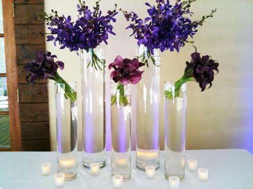 The flower lab september
