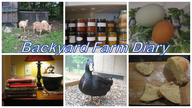 Backyard Farm Diary