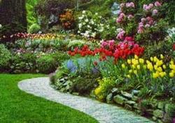 Crea tu propio jardin a tu gusto