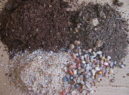 para los cactus del desierto deber mezclarse con arena gravilla de piedra pmez